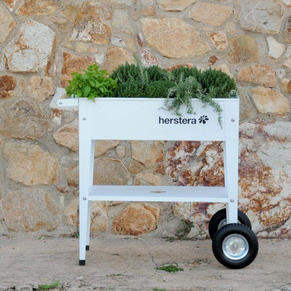 pflanztrolley von herstera mit gummir dern g nstig kaufen. Black Bedroom Furniture Sets. Home Design Ideas